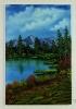 Waldsee Bob Ross Ölbild 10398