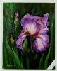Iris Bob Ross Ölbild 10486