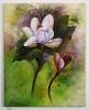 Magnolien jenkins Art Ölbild 10127