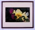 Galerie Blumenbilder