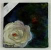 weisse Rose Ilse Wernhard Ölbild 10477