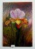 Orchidee Ilse Wernhard Ölbild 10183