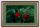 Rote Mohnblumen Ilse Wernhard Ölbild 10288