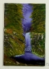Wasserfall im Wald Bob Ross Ölbild 10241