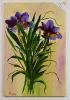 Lilien Jenkins Art Ölbild 10473