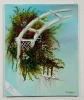 Rosenbogen Jenkins Art Ölbild 10501