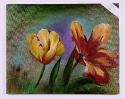 Tulpen Jenkins Art Ölbild 10464